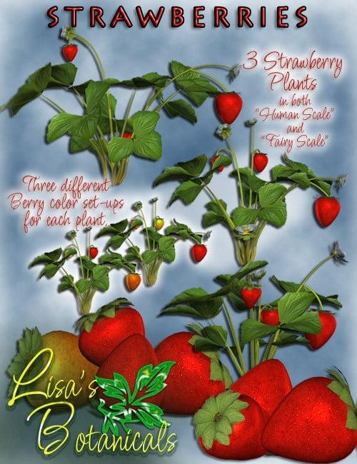 Lisa's Botanicals - Strawberries