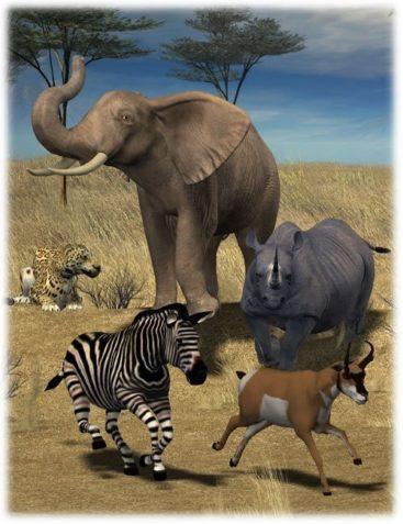 Safari Animals Poses