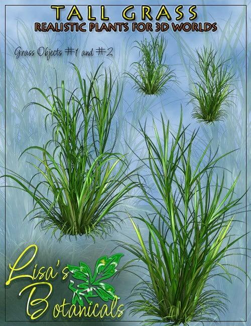 lisas-botanicals-tall-grass-0