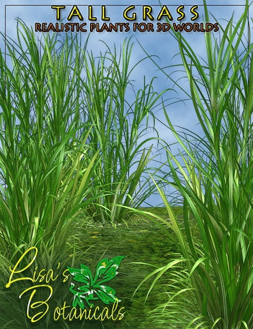 lisas-botanicals-tall-grass-large