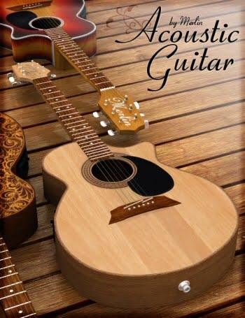 Acoustic Guitar by Merlin
