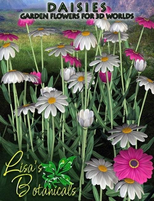 Lisa's Botanicals – Daisies