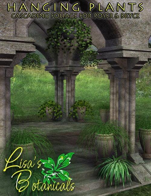 Lisa's Botanicals - Hanging Plants