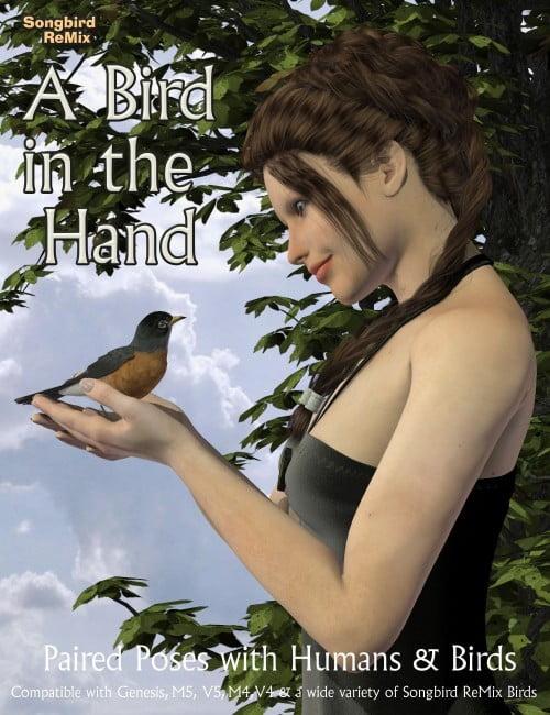 birdinhand-main