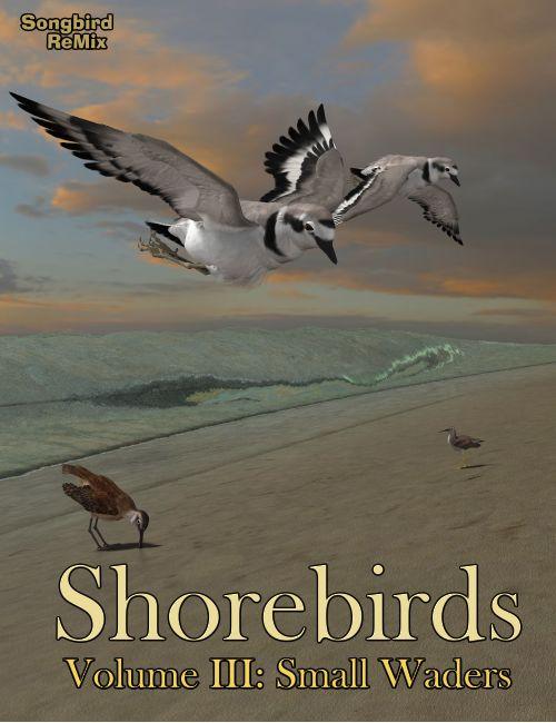 Songbird ReMix: Shorebirds Volume III