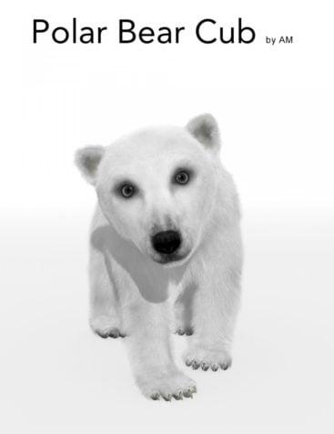Polar Bear Cub by AM