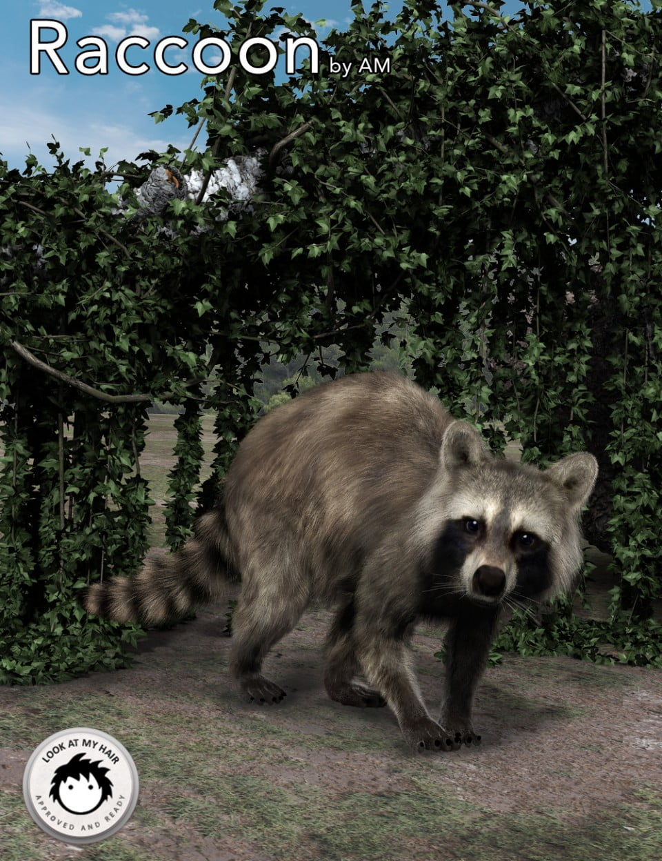 Raccoon-by-AM-cover