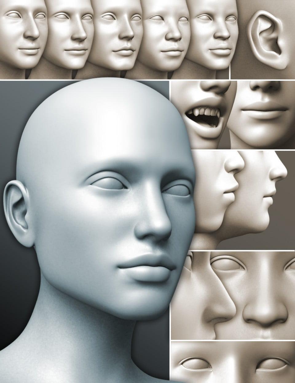 200 Plus - Head & Face Morphs for Genesis 3 Female(s)