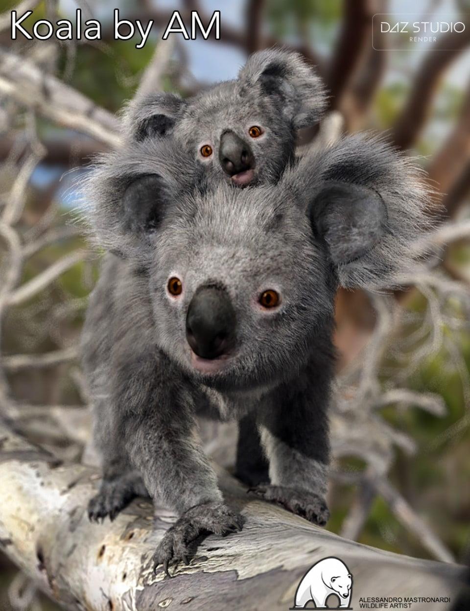 00-main-koala-by-am-daz3d