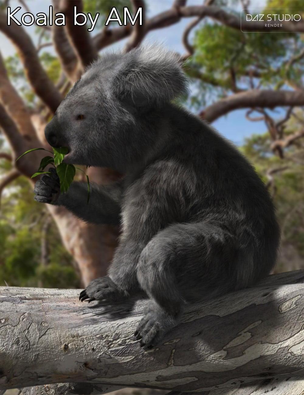 01-koala-by-am-daz3d