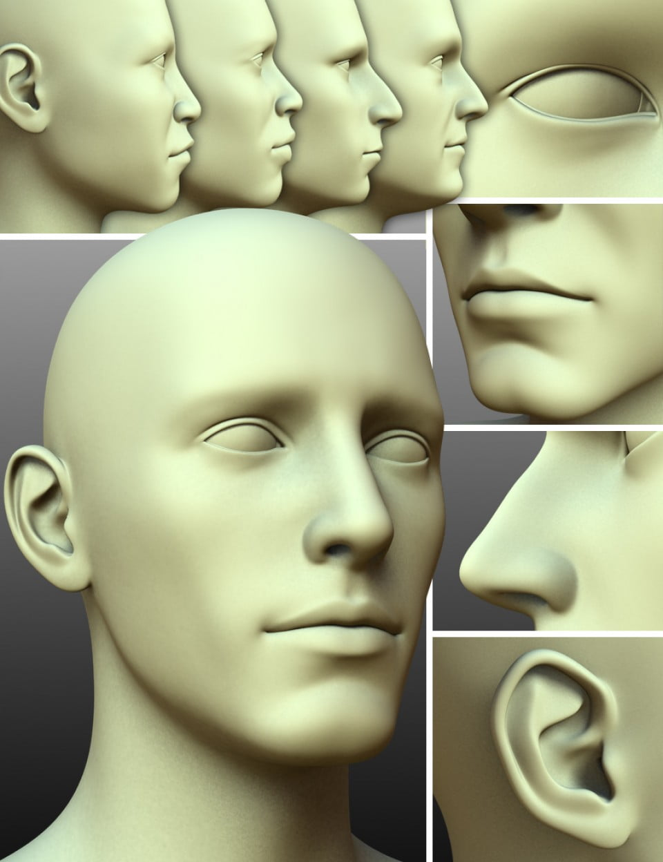 200 Plus – Head & Face Morphs for Genesis 3 Male(s)