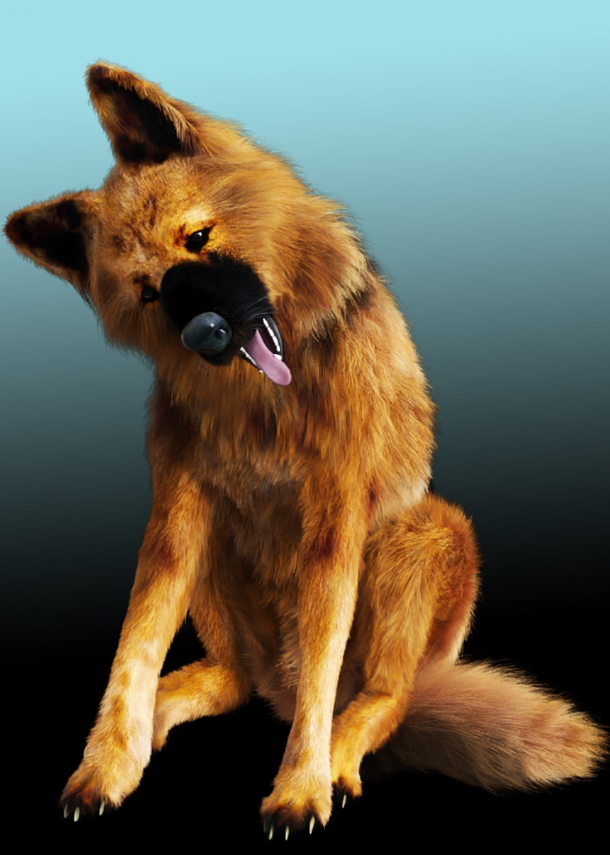 German Shepherd for Wolf 2.0