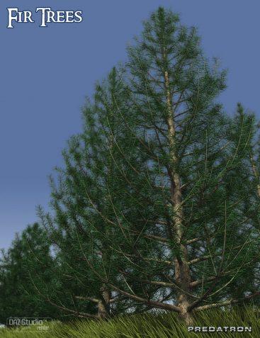 Predatron Fir Trees