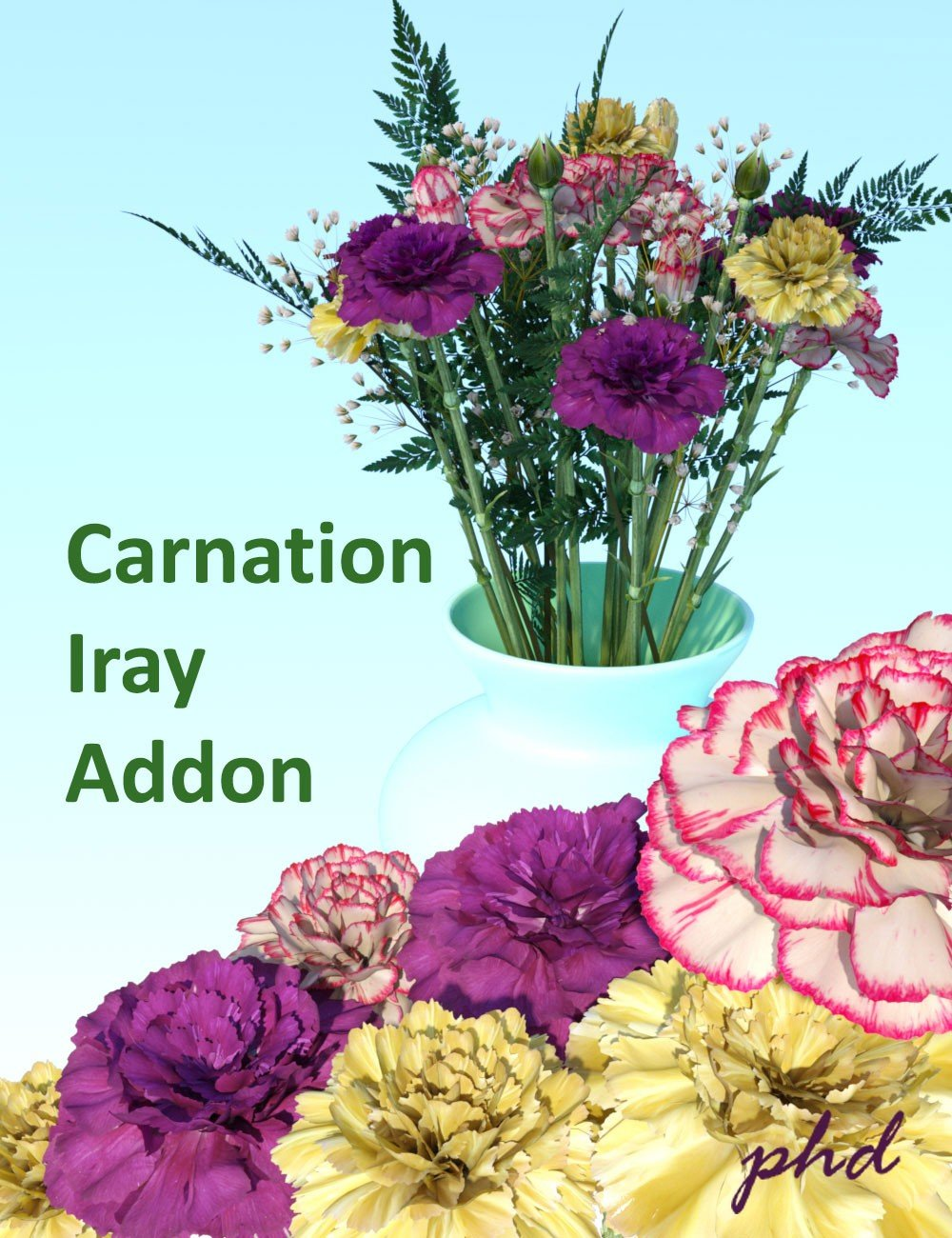 Carnation Iray Addon