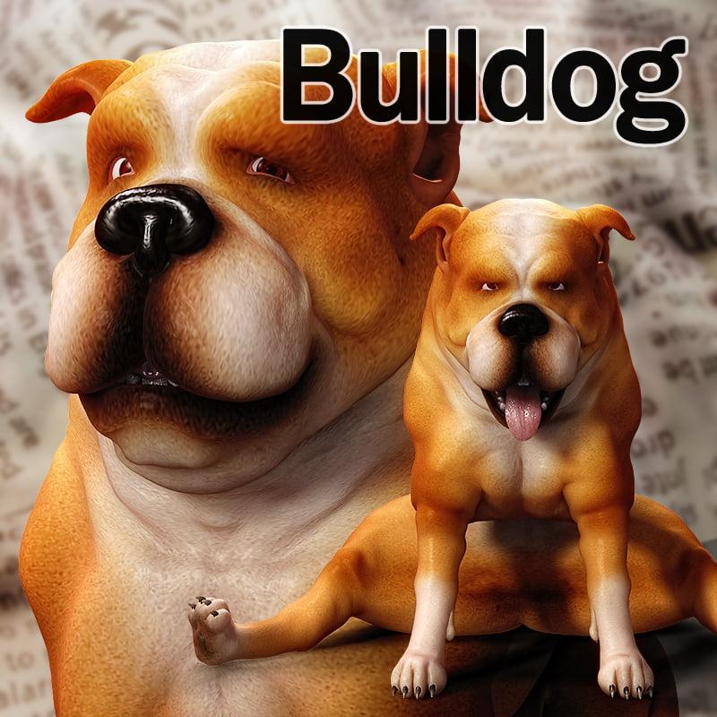 CL-Bulldog For Poser 8 Dog