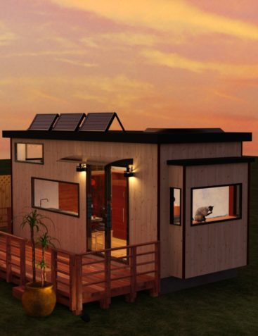 Tiny House and Deck