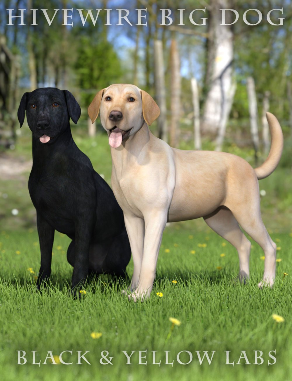 Black and Yellow Labs for the HiveWire Big Dog
