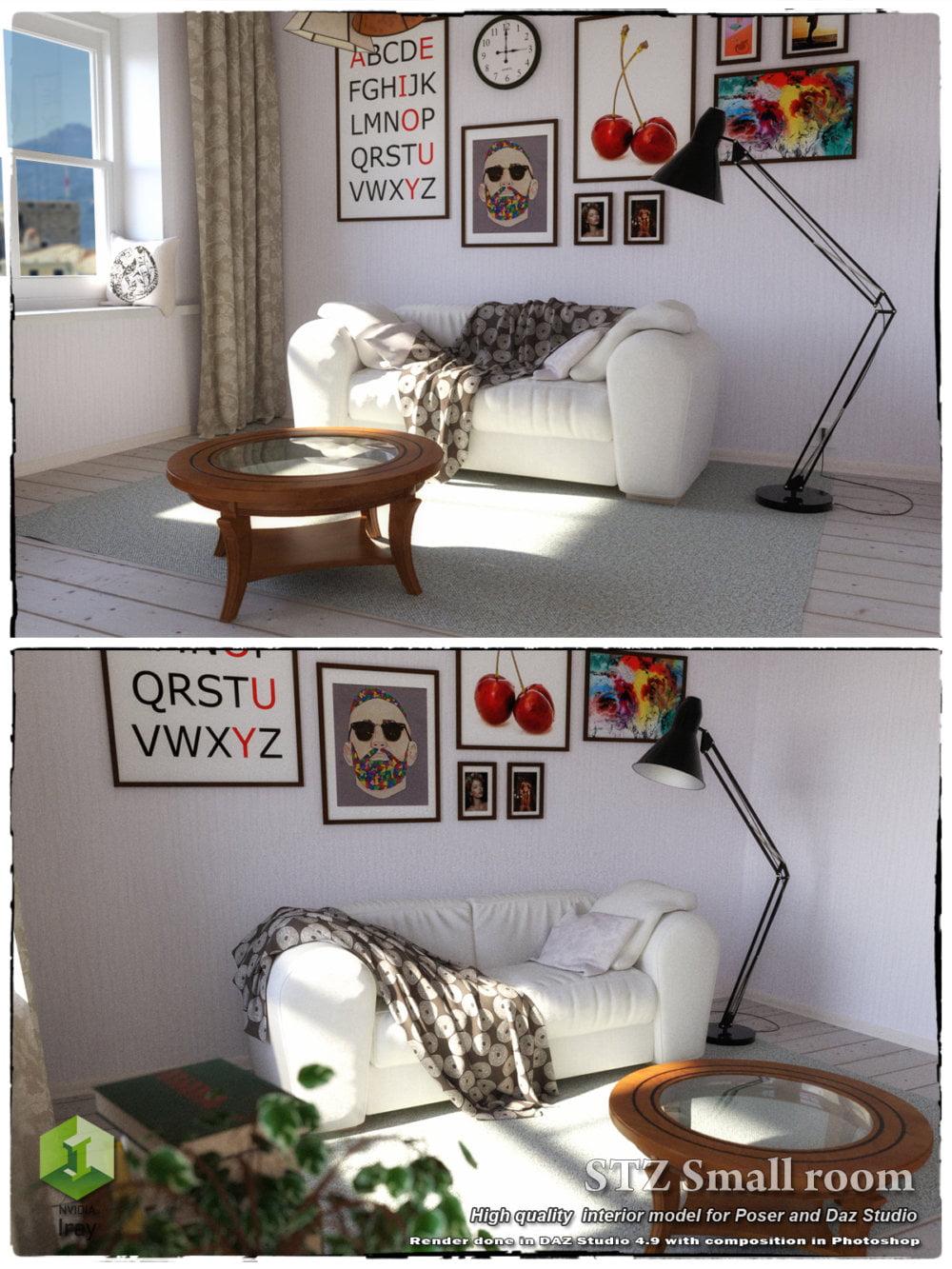 STZ Small room