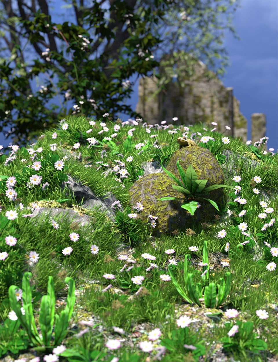 The (Im)Perfect Lawn – Essential Grassland Flowers and Plants