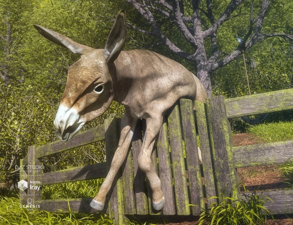dFlatable Donkey