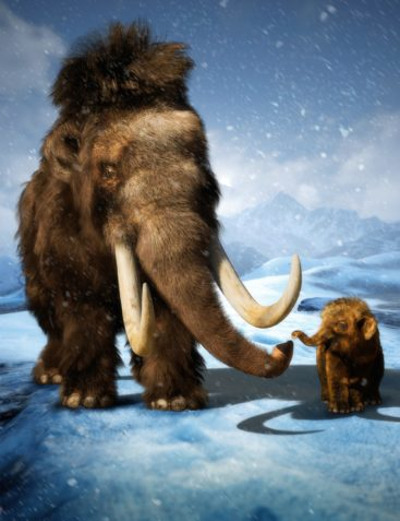 dForce Hair for Woolly Mammoth by AM