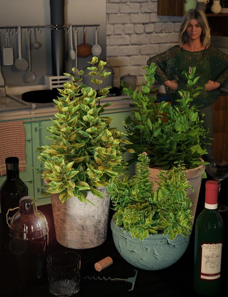 Garden Plants - Herbs Vol 2