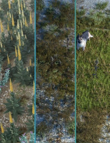 Wasteland Plants and Weeds - Low Resolution Instant Ecosystems